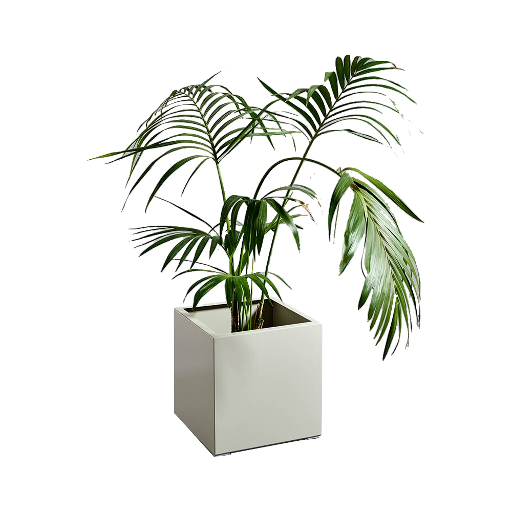 Lodger Planter